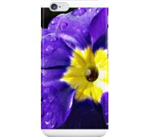 Blue And Yellow Primulas with water droplets iPhone Case/Skin