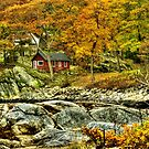 Little Red Cottage by the Ocean by Monica M. Scanlan