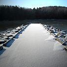 The Snow Pier by teresa731