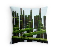 A Seagull's Misty Paradise Throw Pillow