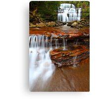 """Liffey Falls and Cascades"" Canvas Print"