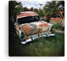 Car in the Home Paddock_1 Canvas Print