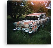 Car in the Home Paddock_3 Canvas Print