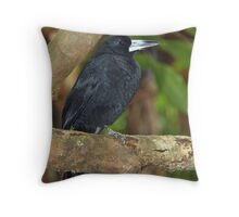 Black Butcherbird Throw Pillow