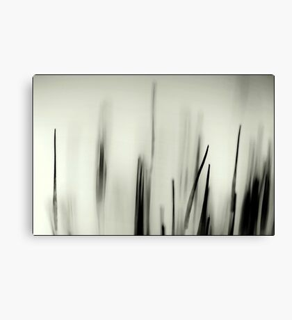 Abstract Moss Canvas Print