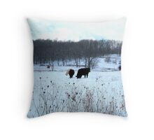 Bovine in Winter Throw Pillow