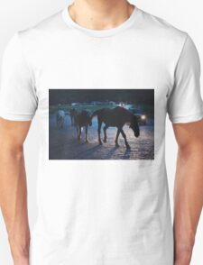 Light behind horses T-Shirt