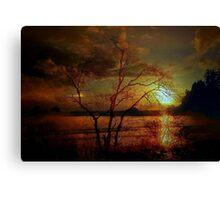 THE COASTAL TREE Canvas Print