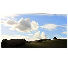 East Bay Hills Photographic Print