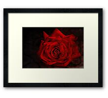 """""""It Must Have Been Love ....."""" Framed Print"""