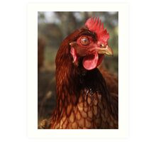 Chicken You Out Art Print