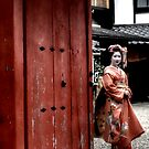 Geisha of Gion by Murray Newham