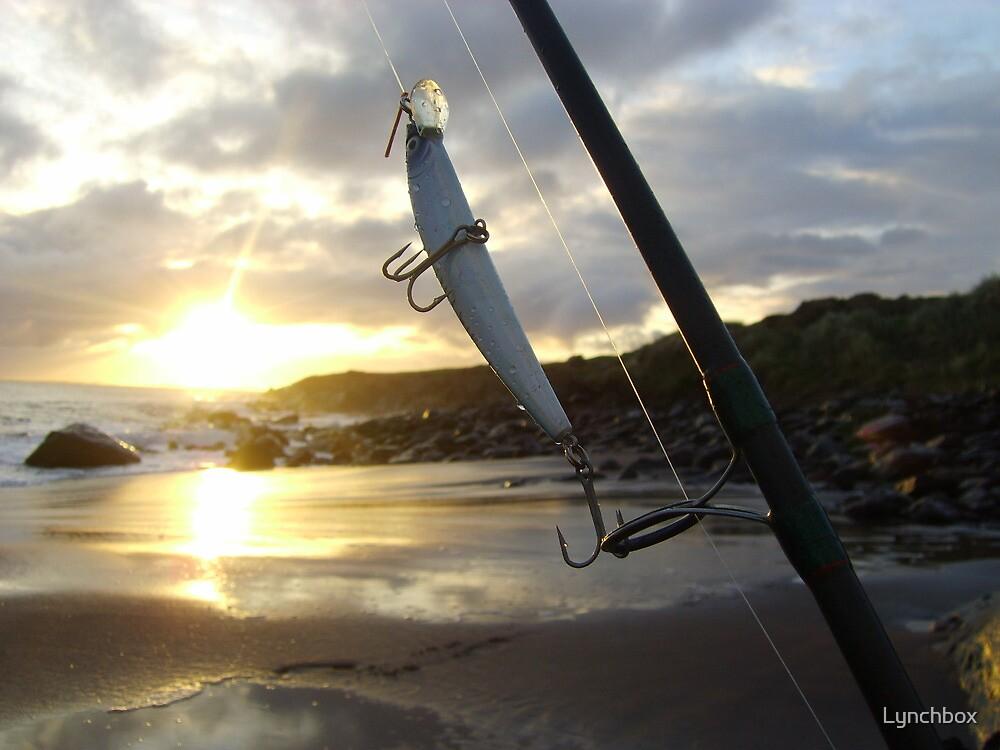 Kerry fishing sunrise by Lynchbox