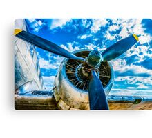The Call Of The Sky Canvas Print