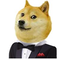 Sir Doge by Laura Marie