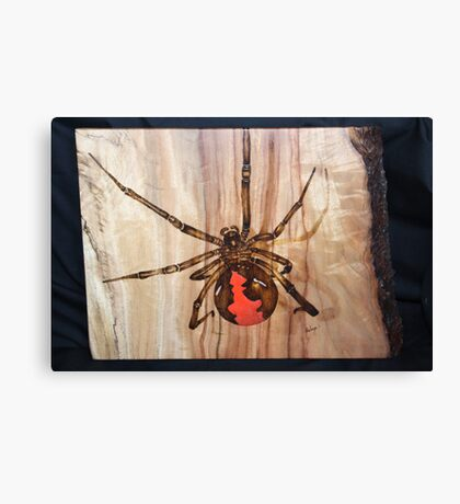 Red Back Spider Canvas Print