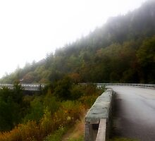 Linn Cove Viaduct, North Carolina by Melinda Watson