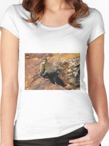 Baboon in Masai Lodge, KENYA Women's Fitted Scoop T-Shirt