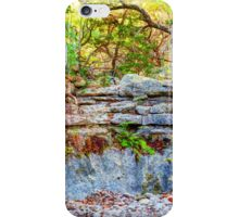 Lost Maples Park iPhone Case/Skin
