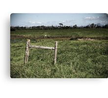 Fence, South Africa Canvas Print