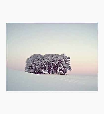 Pastels In The Scottish Snow. Photographic Print