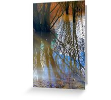 Nature's reflection Greeting Card