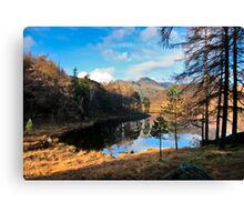A Wonderful View of Blea Tarn Canvas Print