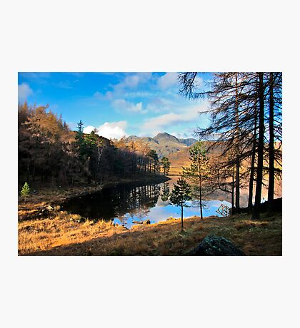 A Wonderful View of Blea Tarn Photographic Print