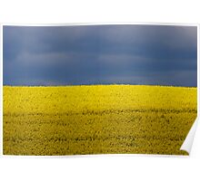 Blue Yellow Sky Field Poster