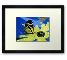 Glasswing on Yellow and Blue Framed Print