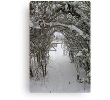 this way to Narnia Canvas Print