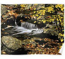 Stream Detail in Autumn Poster
