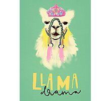Llama drama Photographic Print