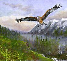 Red Kite by WILT