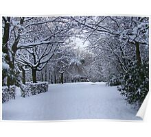 Archway of Snow Poster