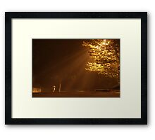 ViVi In The Mist Framed Print