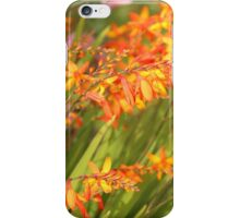 Cana Lilly. Orange and Green soft focus. iPhone Case/Skin
