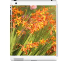 Cana Lilly. Orange and Green soft focus. iPad Case/Skin