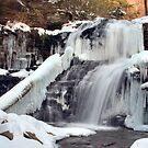 Shawnee Wearing Winter's Sparkling Bling by Gene Walls