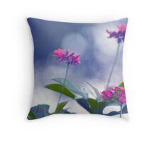 Pink & Blue Throw Pillow