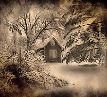 Winter Silence  by Shelly Harris