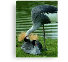 Let Me Get That for You Canvas Print