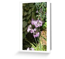 Lilac flowers Greeting Card