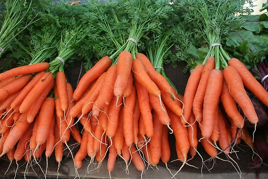 bunches of fresh carrots by Celeste Cota