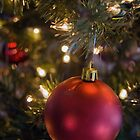 Red ornament on Christmas tree by Celeste Cota