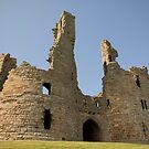 Dunstunburgh Castle: Northumberland by Steven  Lee