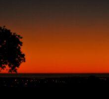 When Night Falls by blackrose25