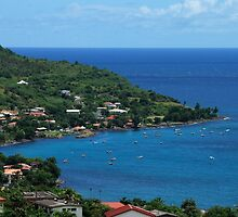 Petite Anse Fishermen Little Town - Martinique, F.W.I. by Olivia Son