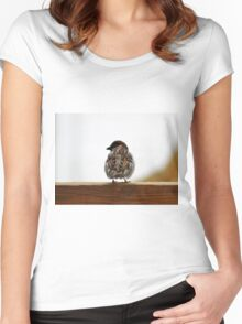 House sparrow  Women's Fitted Scoop T-Shirt