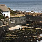 House by the sea in Yorkshire by DJ-Stotty